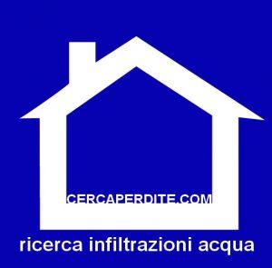 ricerca_infiltrazioni_guaina_tetto